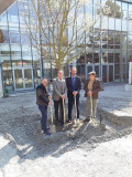 Baumpflanzung Bürgergarten