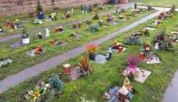 Friedhof Heddesheim