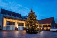 Weihnachtsbeleuchtung in Heddesheim. Foto: Martin Kemmet