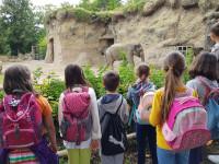 Jugendferienprogramm_Zoo-Heidelberg1