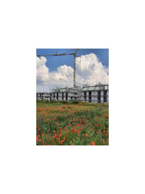 bautätigkeit Sommer 21 Mohnblumenwiese mit Hausbau in Hintergrund